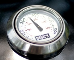 Weber-Performer-Platinum-Thermometer